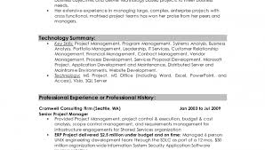 Professional Summary On Resume Resume Example 47 Professional Summary Examples Sample Fold