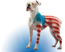 pet safe paint pet costumes for dogs pet spray paint pet paint