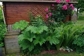 decoration petit jardin décoration 19 petit jardin avec gravier toulon toulon meteo