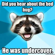 Bed Bug Meme - did you hear about the bed bug he was undercover lame pun coon