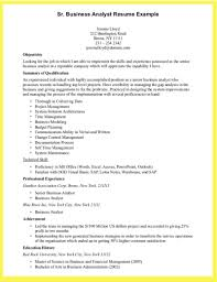 Sample Resume Data Analyst by Business It Business Analyst Resume