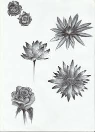 flower sketch by lilithhatchersoon on deviantart