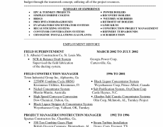 Example Of A Summary For A Resume Examples Of Resume Summary 19 Professional Cool Idea Objective For