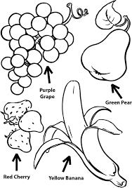 pear coloring page contegri com