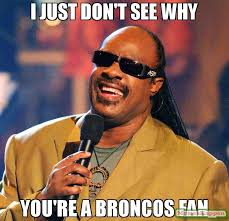 Broncos Fan Meme - i just don t see why you re a broncos fan meme stevie wonder