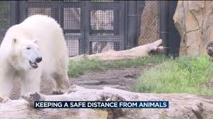 henry vilas zoo prevents animal human injury with barriers signs