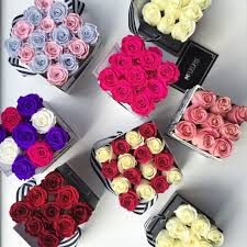 roses in a box next s day ask for your roses in a box montreall