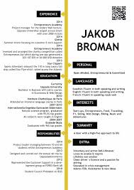 mini resume or portable pocket resume business card template