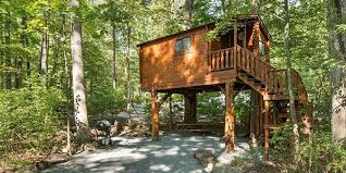 rentals tree house lake in wood campground
