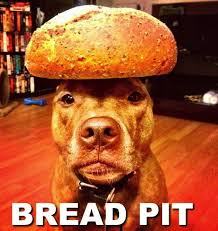 Loaf Meme - post 22901 justpost virtually entertaining