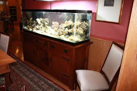 aquariums on pinterest aquarium home and fish tank table learn