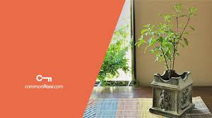 simple and effective vastu tips for a blissful home
