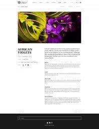 native plants in the tropical rainforest tropical garden u2014 binaryfishie
