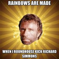Richard Simmons Memes - rainbows are made when i roundhouse kick richard simmons create
