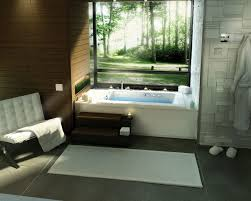 bathroom masculine bathroom design ideas jacuzzi design with nice