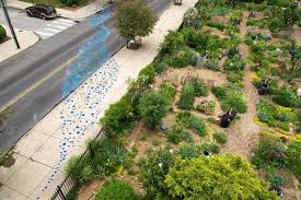 Community Gardens In Urban Areas Update Three New Public Hearings On Discounted Stormwater Rate
