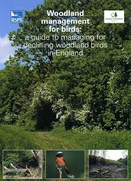 habitat management for invertebrates amazon co uk peter kirby