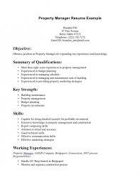 resume summary exles marketing resume summary exles good summary for a resume 12 summary