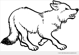impressive ideal wolf color photo awesome coloring pages