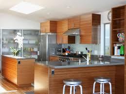 Kitchen Cabinet Handle Ideas Kitchen Mid Century Modern Kitchen With Sea Green Glass Tile
