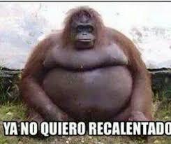 Gorilla Memes - gorilla memes spanish memes best of the funny meme