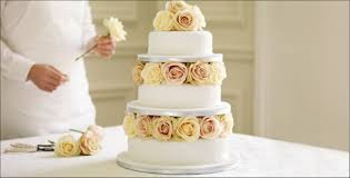 undecorated wedding cakes ideas 1859 haldol org