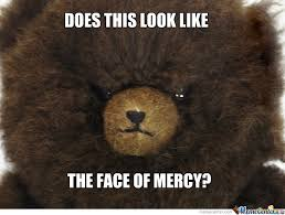 Bear Stuff Meme - bear of mercy i think not by sareth13 meme center