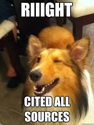 Riiight Meme - riiight cited all sources winking collie quickmeme