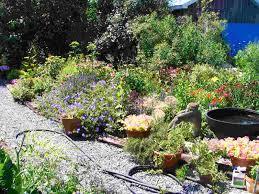 backyard gardens pictures