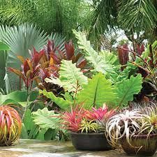 garden design garden design with fresh ideas from the new sunset