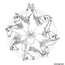 coloriage cheval dessin à imprimer gratuit