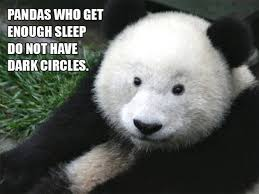 Funny Panda Memes - pandas funny pictures quotes memes jokes 52318 quotesnew com