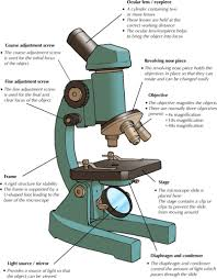 what is a light microscope used for natural sciences grade 9