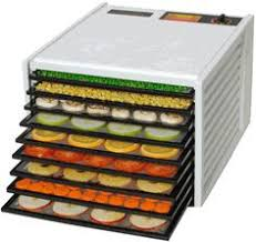 home depot excalibur dehydrator black friday excalibur dehydrator d500cdshd clear door timer ss trays