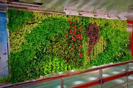 living room indoor 2017 living wall planter 2017 living wall