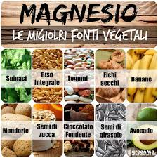 alimentazione ricca di proteine cibi proteici vegetariani l elenco greenstyle proteine