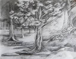 forest pond drawing google search vol 1 landscape