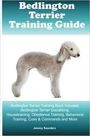 bedlington terrier guide bedlington terrier training guide bedlington terrier training