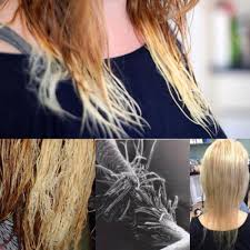 bob haircuts for damaged hair how to fix fried hair there are effective solutions