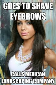 Landscaping Memes - goes to shave eyebrows calls mexican landscaping company misc