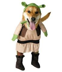 Funny Dog Halloween Costumes 27 Funniest Pet Halloween Costumes Today