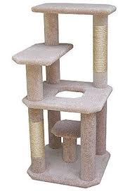 Free Diy Cat Tree Plans by 30 Best Pets At Home Images On Pinterest Animals Cat Towers And