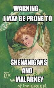 Funny Irish Memes - b9529fd58943a6eb622d8bcd530d4547 funny irish quotes irish memes