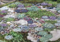 Rock Garden Succulents Succulent Rock Garden Ideas Oversized Cacti And Succulent Rock