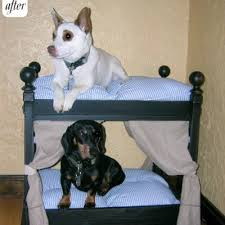Bunk Bed For Dogs 10 Fun Diy Bunk Bed Plans Craftfoxes