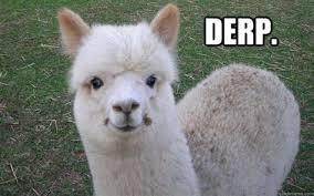 Alpaca Sheep Meme - th id oip n ttccgbkltflnnca5xc6whaeo