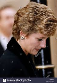 241 best diana princess of wales images on