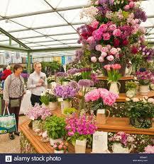 Indoor Flowers Indoor Flower Show Stock Photos U0026 Indoor Flower Show Stock Images