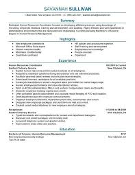 Hospitality Resume Template Ideal Resume Example Best Resume Examples For Your Job Search