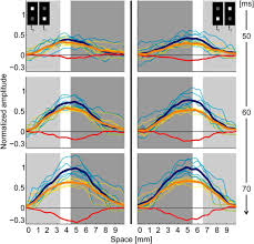 temporal asymmetry in dark u2013bright processing initiates propagating